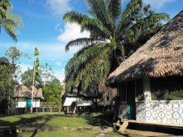 Expanded Consciousness camp in Peru: Amazon and MacchuPicchu